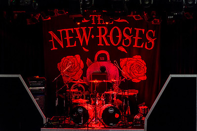 The New Roses_007©SergeHonthaas