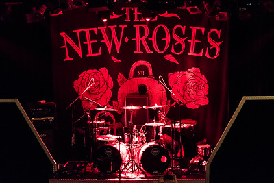 The New Roses_008©SergeHonthaas