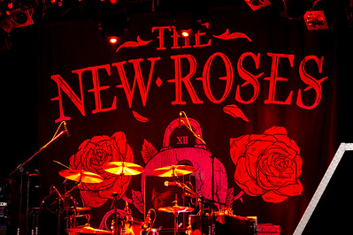 The New Roses_001©SergeHonthaas