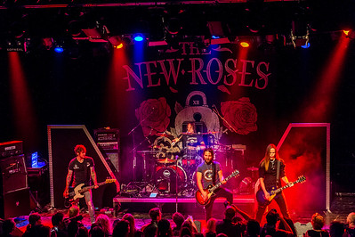 The New Roses_009©SergeHonthaas