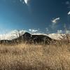 Blue Gramma Smokey Mtn Exclosure-4073