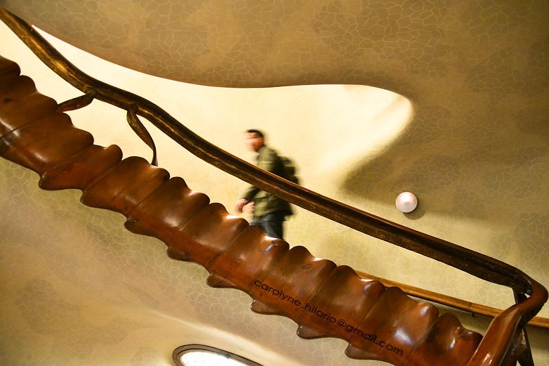 Spinal Staircase at Casa Batllo<br /> Barcelona, Spain