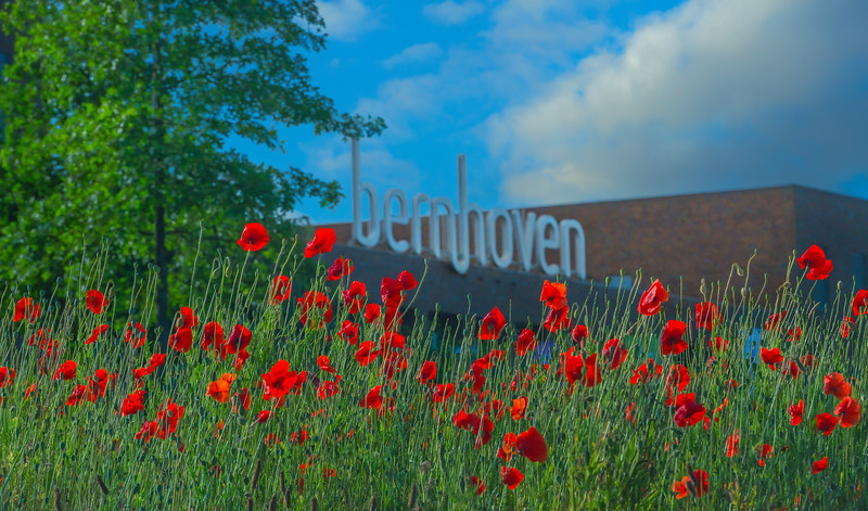 Bernhoven Ziekenhuis Zomer 2020