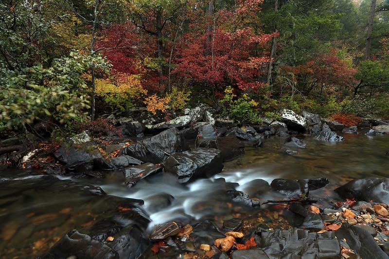 Autumn Splendor - Cossatot River State Park - Arkansas - Nov 1st, 2017