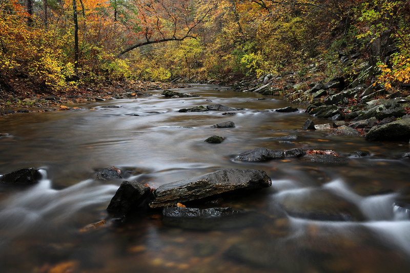 Knee Deep in the Water Somewhere - Cossatot State Park - Arkansas - Fall