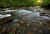 Chasing the light - Cossatot River