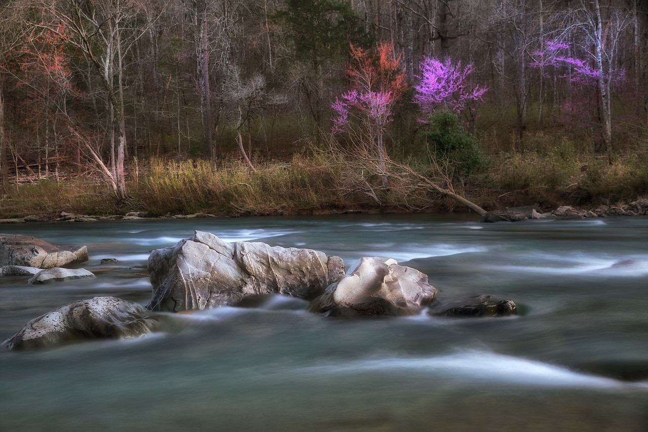 Beside Still Waters - Cossatot River State Park - Spring 2016