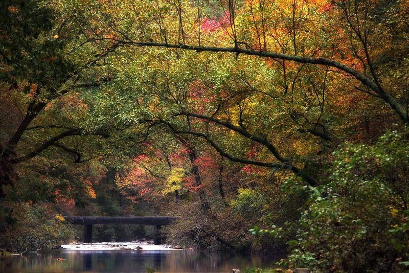 Mirror Reflections - Cossatot River