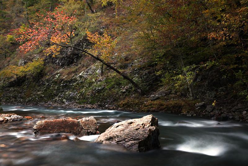 Upper Cossatot River - Fall