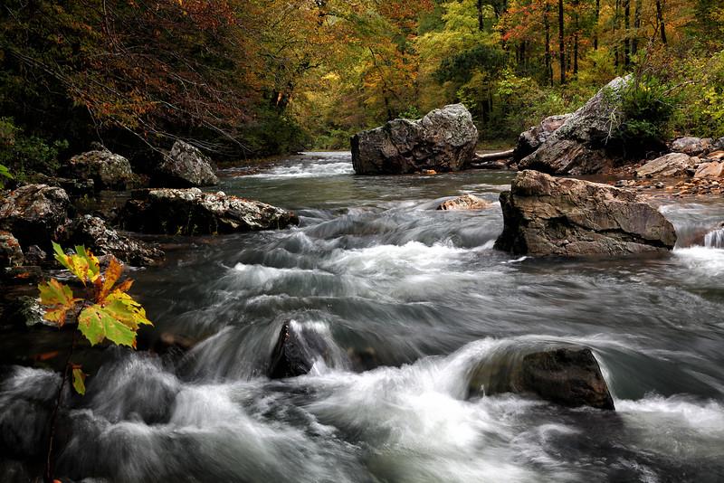 Upper Cosssatot River - Arkanas in Fall