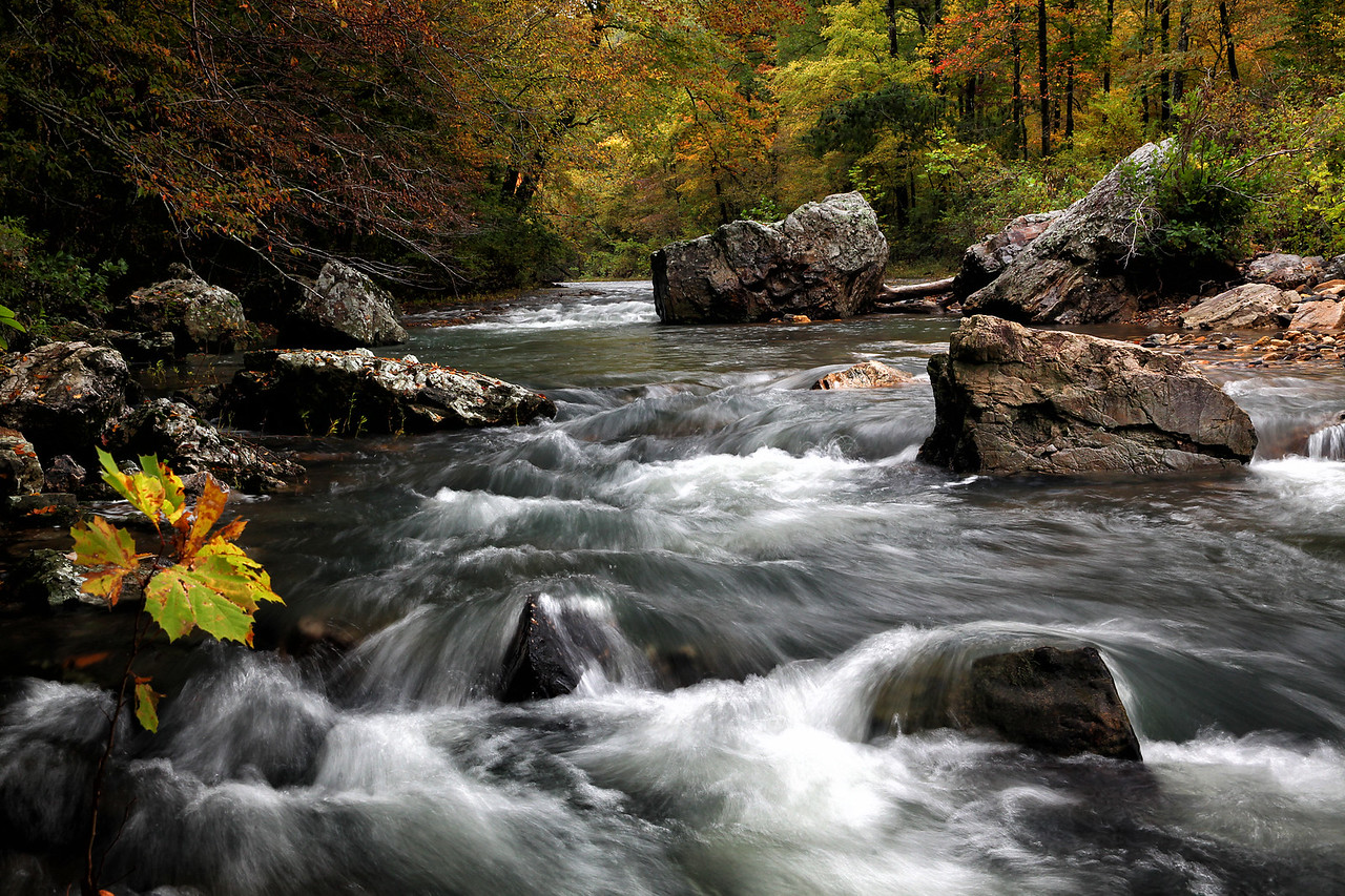 Upper Cosssatot River - Arkanas in Fall