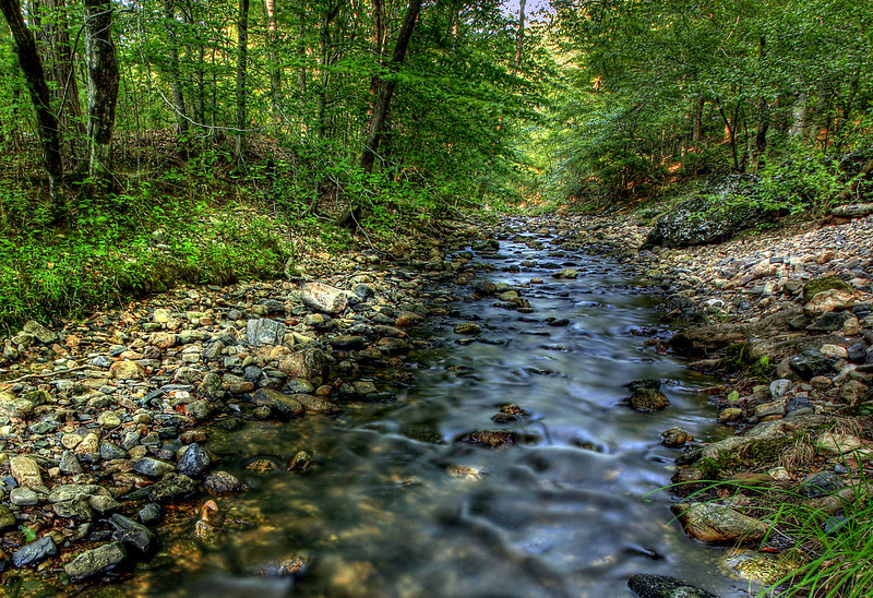Spring Flow into the River - Cossatot River