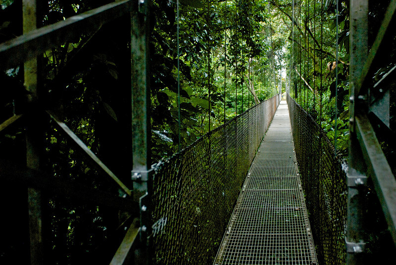 Footbridge on Arenal Trail