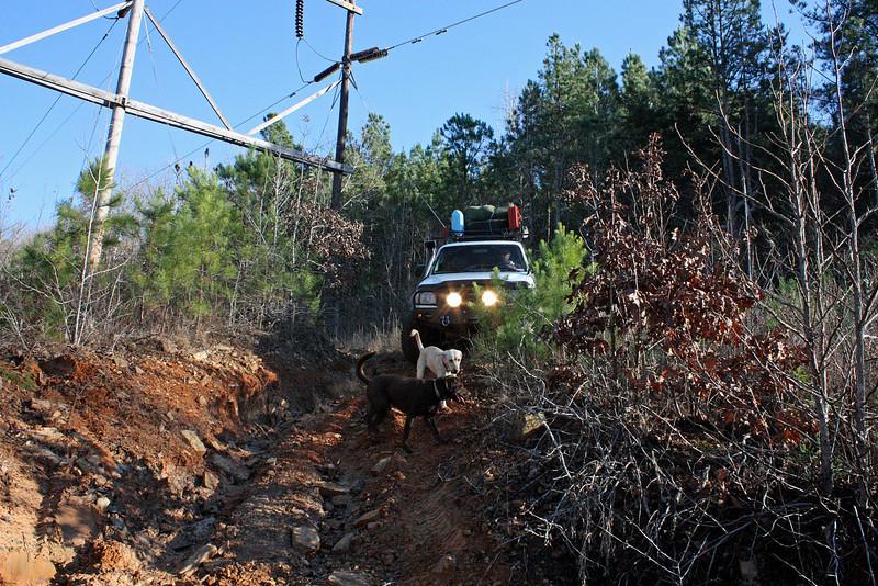 power lines - 12