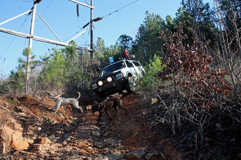 power lines - 13