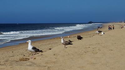 Balboa Peninsula, California