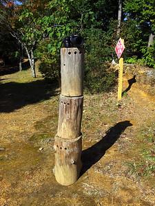 Kumano Kodo -  Lookout Point