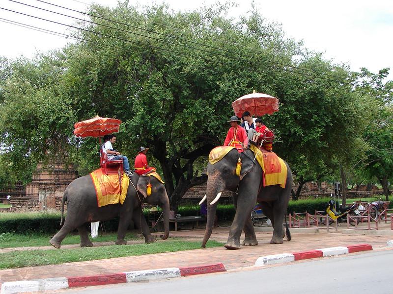 Elephant Rides in Ayutthaya - Thailand