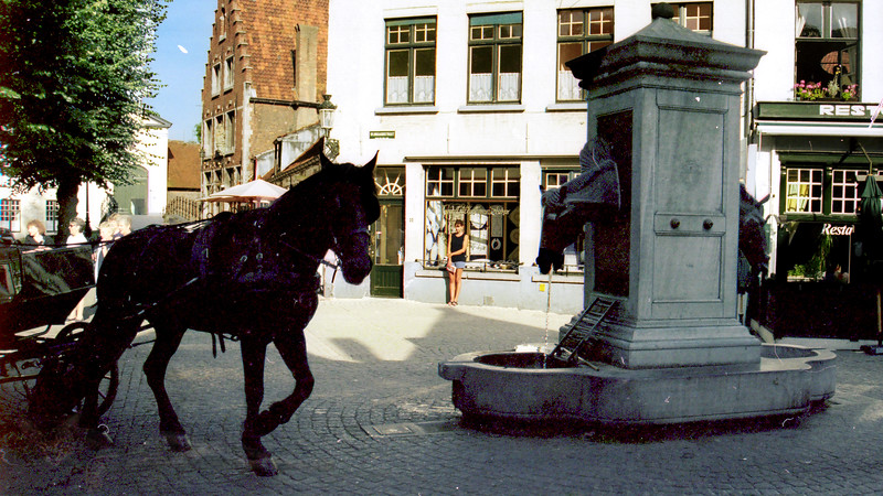 Horse and Horse Head Drinking Trough