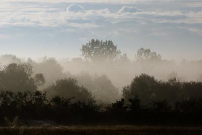 Misty Morning near Montendre