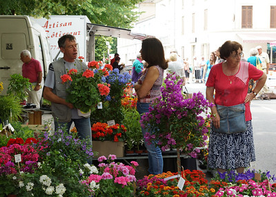 Flowers in the Market