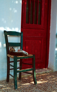 Cats on a chair in Naxos