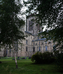 Durham Cathedral Through Trees
