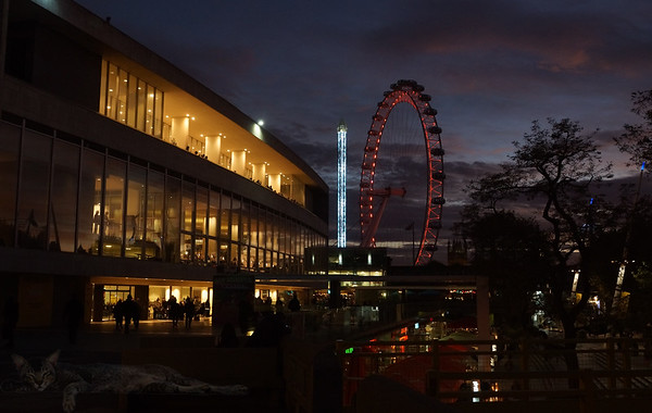 London Eye From Southbank