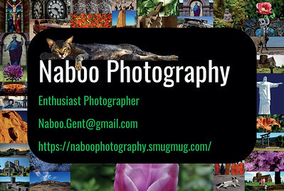 Naboo Photography - Business Card