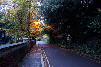 Church Path - Merton Park