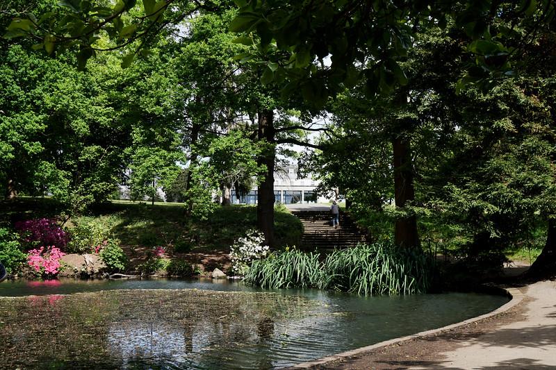 Cannizaro Park - Pond - 2020