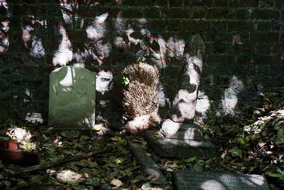 Cannizaro Park - Pet Cemetery