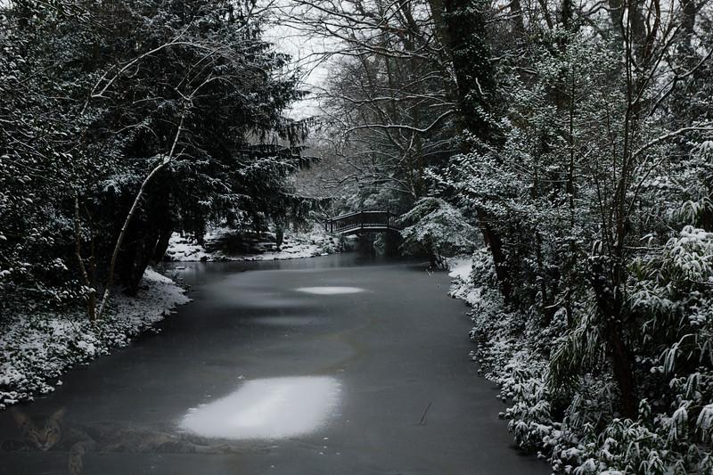 Buddahpadipa Temple Garden in Winter