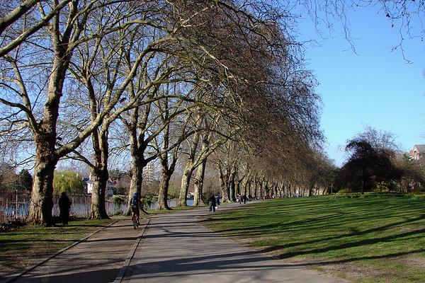 Canbury Gardens - Kingston
