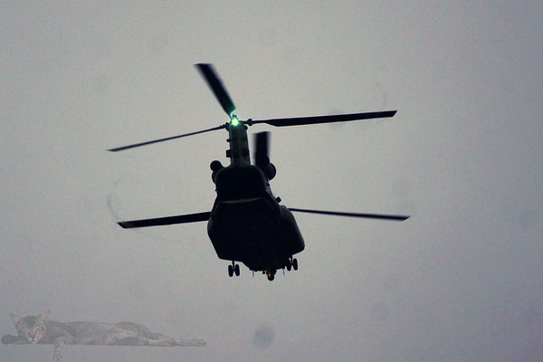 River Thames - RAF Chinook Patrol - 2020