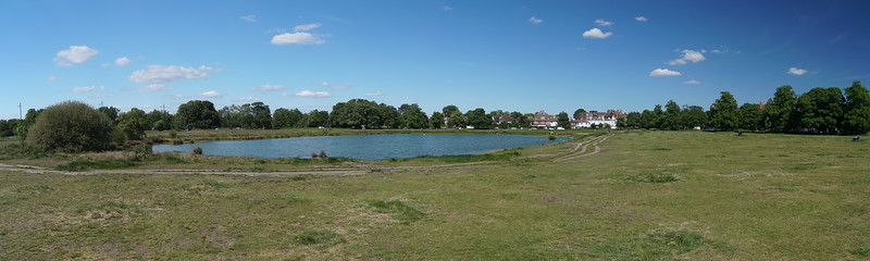 Rushmere Pond on Wimbledon Common