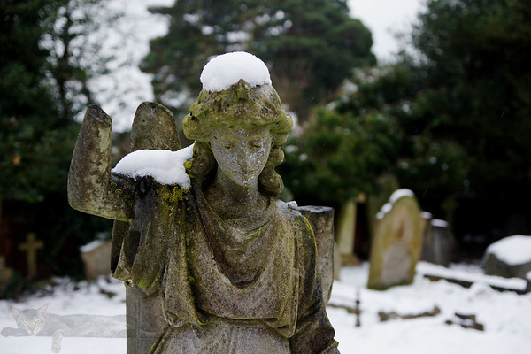 Angel Statue in St Mary's Church Graveyard