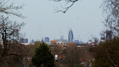 London Skyline from Cannon Hill Common