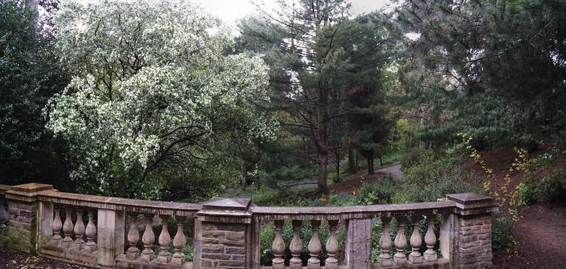 Cannizaro Park - Folly