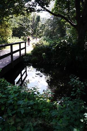 Bridge over The Wandle