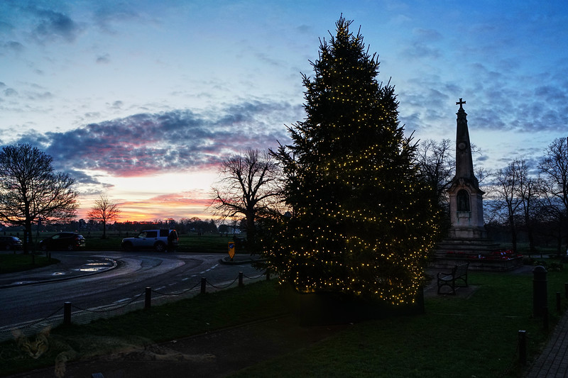 Christmas Tree by The War Memorial