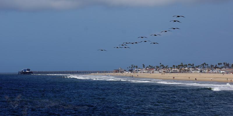California Dreaming - Balboa Peninsula Beach from Balboa Pier - California