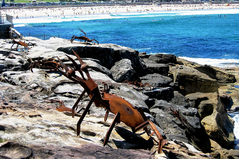 Crab Sculptures on the Manly Sculpture Walk