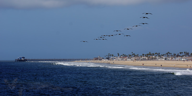 California Dreaming - Balboa Peninsula Beach from Balboa Pier - California
