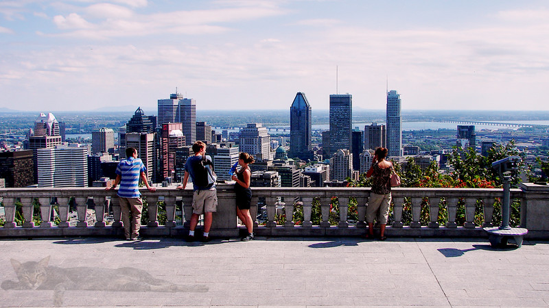 Mount Royal View Point