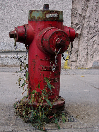 Fire Hydrant - Montreal