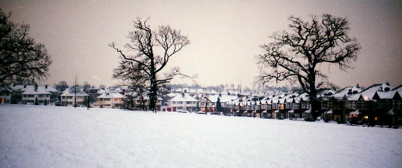 Cannon Hill Common - Winter Panorama
