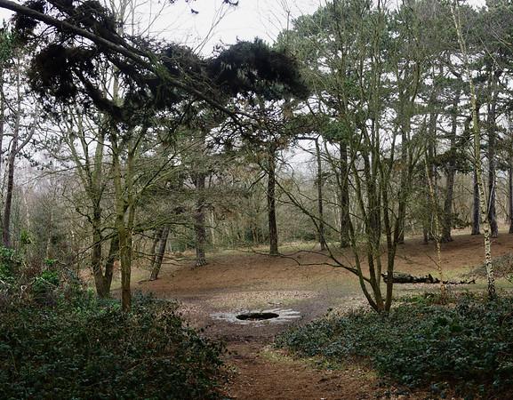 Caesar's Well, Wimbledon Common