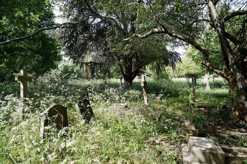 Graveyard of St Marys - Merton Park