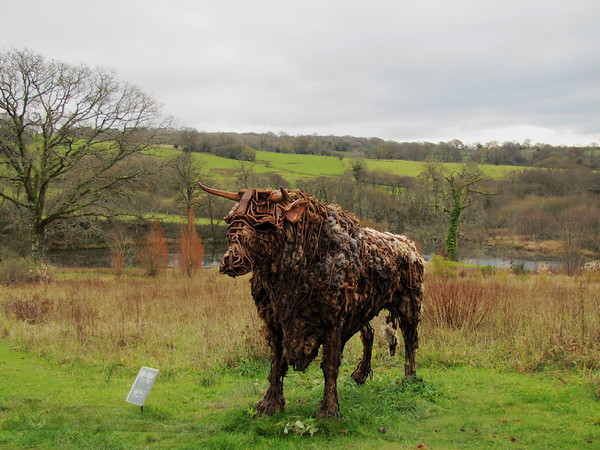 Tarw Sculpture by Sally Matthews